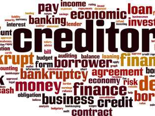 CREDITORS' RIGHTS AND BANKRUPTCY ISSUES